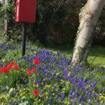 At the Grange - Cottage Garden